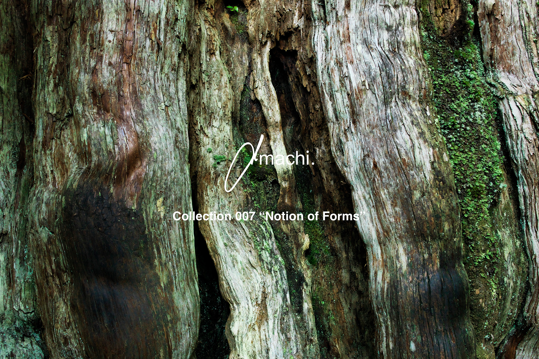 """amachi.